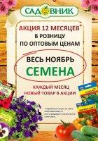 """Акция """" 12 месяцев в Садовнике""""- Ноябрь"""