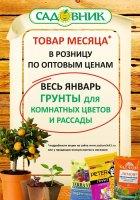 """Акция """"Товар месяца в Садовнике"""" - Январь"""