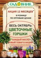 """Акция """" 12 месяцев в Садовнике""""- Октябрь"""