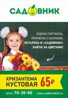 Букеты к 1 сентября в Кирове Доставка